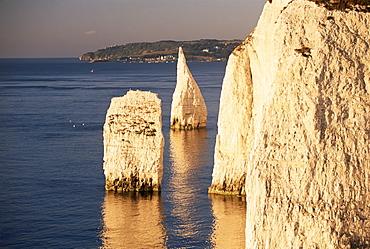 Early morning light on the Pinnacles, Handfast Point, Studland, Dorset, England, United Kingdom, Europe