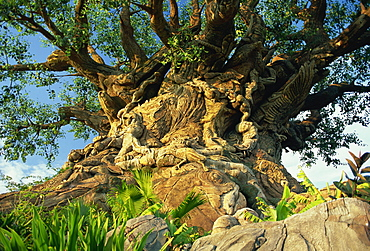 The Tree of Life, Animal Kingdom, Disneyworld, Orlando, Florida, United States of America, North America