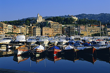 View across the harbour, Santa Margherita Ligure, Portofino Peninsula, Liguria, Italy, Europe