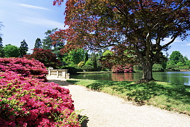 Path on bank of Ten Foot Pond, Sheffield Park Garden, East Sussex, England, United Kingdom, Europe