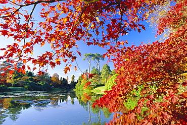 Sheffield Park Garden, the Middle Lake framed by scarlet Acer leaves, Autumn, East Sussex, England, UK