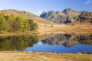 The Langdale Pikes reflected in Blea Tarn, above Little Langdale, Lake District National Park, Cumbria, England, United Kingdom, Europe