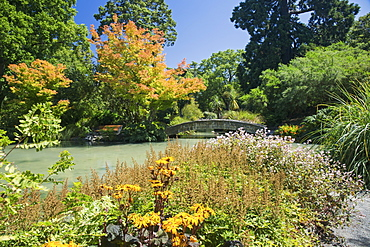 The Water Garden, Christchurch Botanic Gardens, Christchurch, Canterbury, South Island, New Zealand, Pacific