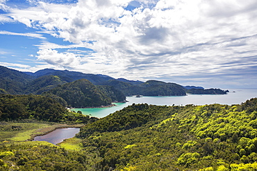 View over Torrent Bay from the Abel Tasman Coast Track, Abel Tasman National Park, near Marahau, Tasman, South Island, New Zealand, Pacific