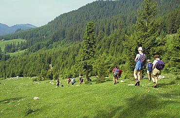 Piatra Craiului Mountains, Carpathians, Transylvania, Romania, Europe