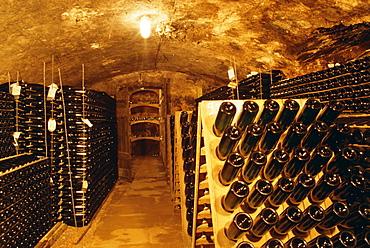 Cellar, wine production, Saarburg, Saar-Valley, Germany, Europe