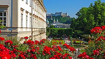 Mirabell Gardens against Fortress Hohensalzburg, Salzburg, Austria, Europe