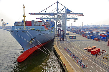 Container Terminal, harbour of Hamburg, Germany, Europe