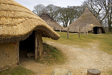 Castell Henllys, a reconstructed Iron Age hill fort circa 600BC, Pembrokeshire Coast National Park, Pembrokeshire, Wales, United Kingdom, Europe
