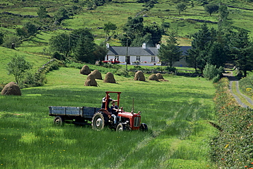 Croft with hay cocks and tractor, Glengesh, West Donegal, County Donegal, Eire (Republic of Ireland), Europe