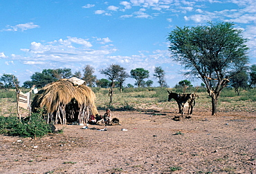 Bushmen, Kalahari, Botswana, Africa