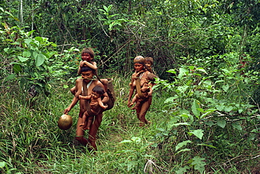 Yanomami Indians on their way to a feast, Brazil, South America - 42-2269