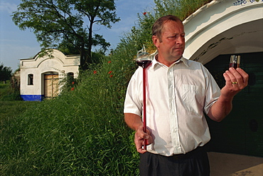 Winegrower sampling his wine, Petrov, South Moravia, Czech Republic, Europe