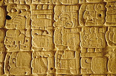 Mayan carvings on Stela, Tikal, Guatemala, Central America