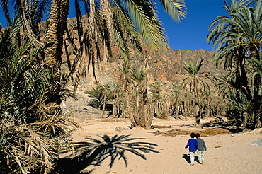 Two children in oasis, Wadi Feiran, Sinai, Egypt, North Africa, Africa