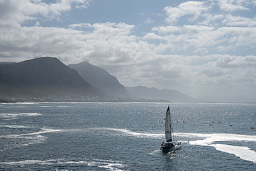 Catamaran heads out to sea through a flotilla of sea kayakers, Hermanus, South Africa, Africa