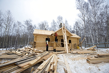 Building traditional wooden cabin in the Siberian Taiga forest, Irkutsk Oblast, Russia, Eurasia
