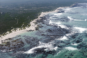 Aerial photography of ocean and kelp beds at Walker Bay, near Hermanus, Western Cape, South Africa, Africa