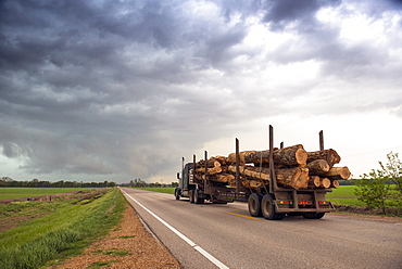 Logging truck in Mississippi driving into the heart of a thunderstorm with an extreme tornado watch, United States of America, North America