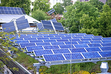 One of the first combined photovoltaic/solar panelled and green roofs built in the world, experimental roof built in 1990s, Berlin, Germany, Europe