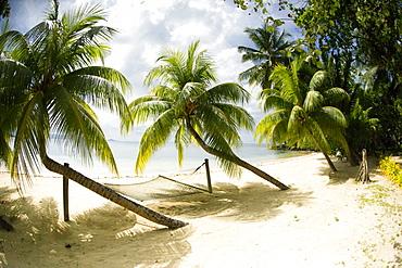 Tropical island beach with hammock at Matangi Island Resort, Vanua Levu, Fiji, Pacific