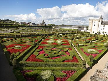 Formal gardens at the Chateau de Villandry, UNESCO World Heritage Site, Loire Valley near Tours, Indre et Loire, Centre, France, Europe