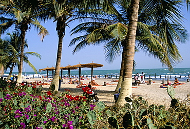 Palm trees and tourists, Bakau beach, the Gambia, West Africa, Africa