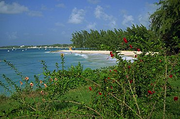 Enterprise Beach, Barbados, West Indies, Caribbean, Central America
