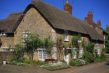 Thatched cottages with roses on the walls at Burton Bradstock in Dorset, England, United Kingdom, Europe