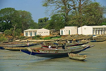 Fishing boats pulled up onto beach, Albreda, Gambia, West Africa, Africa