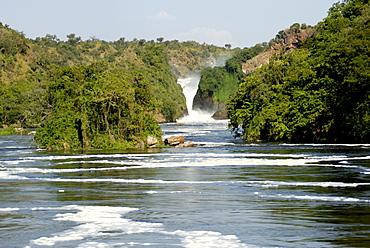 Murchison Falls, Victoria Nile, Uganda, East Africa, Africa
