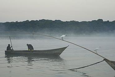 Bugala Island, Lake Victoria, Uganda, East Africa, Africa