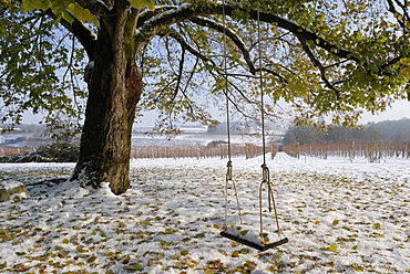 Swing in autumn snow, Charente, France, Europe
