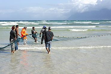 Fshermen pulling in large net, Muizenberg, Cape Province, South Africa, Africa