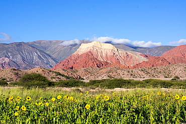 Coloured mountains, Salta district, Argentina, South America