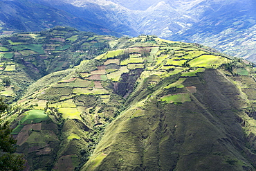 Kuelap, precolombian ruin of citadel city, Chachapoyas view, Peru, South America