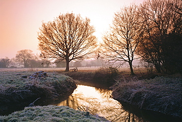 Winter dawn on the River Bourne, Chobham, Surrey, England, UK
