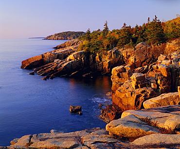 Rocky shoreline, Acadia National Park, Maine, New England, USA