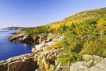Acadia national park coastline, Maine, New England, USA, North America