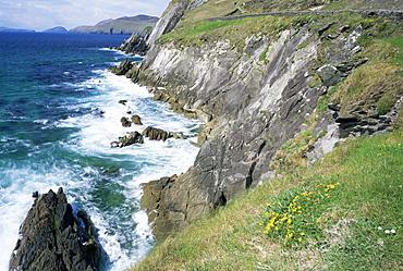 Slea Head, Dingle Peninsula, County Kerry, Munster, Eire (Republic of Ireland), Europe