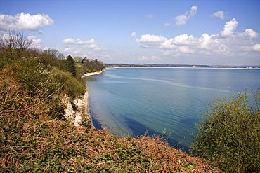 Studland, Poole Bay, Dorset, England, United Kingdom, Europe