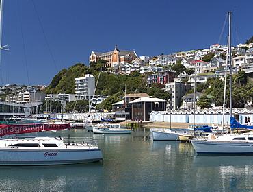 Royal Port Nicholson Yacht Club marina and St. Gerard's Monastery, Oriental Bay, Wellington,  North Island, New Zealand, Pacific