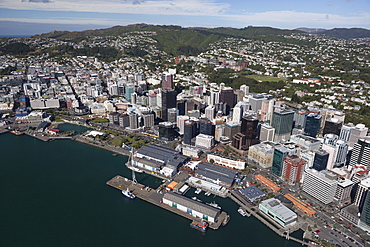 Aerial view of Wellington city centre and Queens Wharf, Wellington, North Island, New Zealand, Pacific