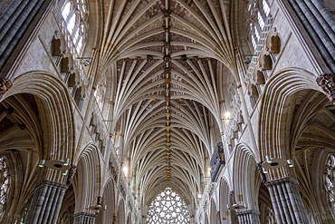 Nave vaulting looking West, Exeter Cathedral, Exeter, Devon, England, United Kingdom, Europe