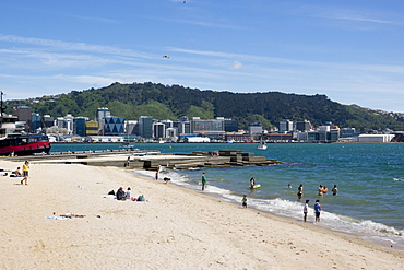 Freyberg Beach and city waterfront in Wellington, New Zealand, Oceania