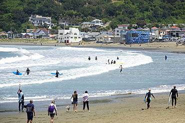 Surfers and walkers, Lyall Bay, Wellington, North Island, New Zealand, Pacific