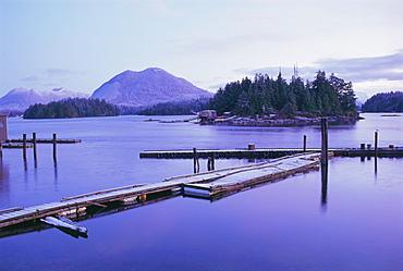 Tofino, Vancouver Island, British Columbia (B.C.), Canada, North America