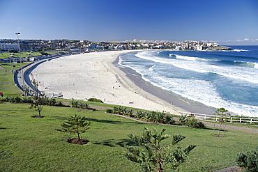 Bondi Beach, Sydney, New South Wales (NSW), Australia, Pacific