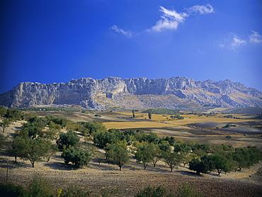 Torcal de Antequera Natural Park (El Torcal National Park), Andalucia (Andalusia), Spain, Europe