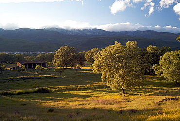 View to Sierra de Gredos, La Vera, Extremadura, Spain, Europe